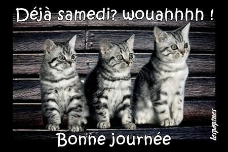 bonjour/bonsoir de juillet - Page 2 D993fb67