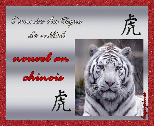 Économie du tigre asiatique